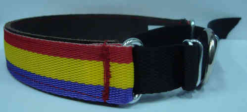 COLLAR PARA PERRO REPUBLICANO MEDIANO